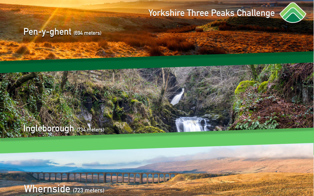 The APG team will be tackling the Yorkshire Three Peaks Challenge for The Marie Curie Foundation & Ollerton Memory Café
